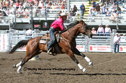 November 2012 issue of Western Horseman