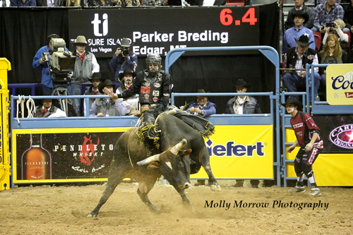 2015 NFR