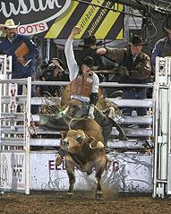 Seth Glause, 2008 Ellensburg Rodeo Xteme Bulls winner