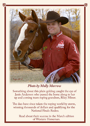 Molly Morrow photo of Riley Ogie in Western Horseman