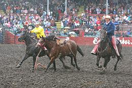 2009 Ellensburg Rodeo